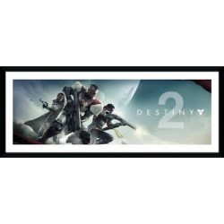 DESTINY 2 - COLLECTOR PRINT...